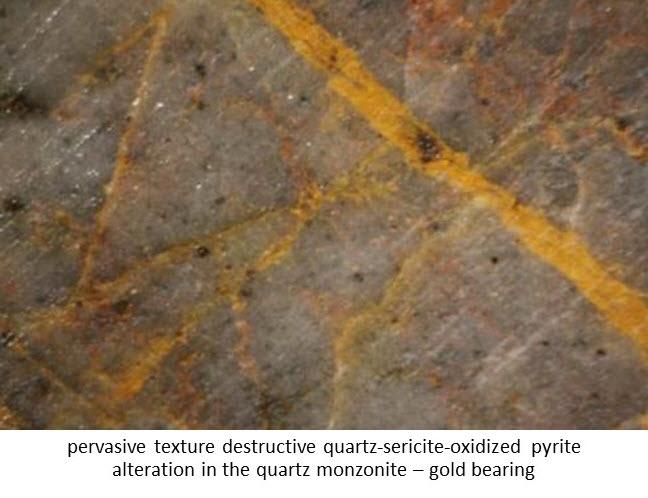 pervasive texture destructive quartz-sericite-oxidized pyrite alteration in the quartz monzonite ñ gold bearing
