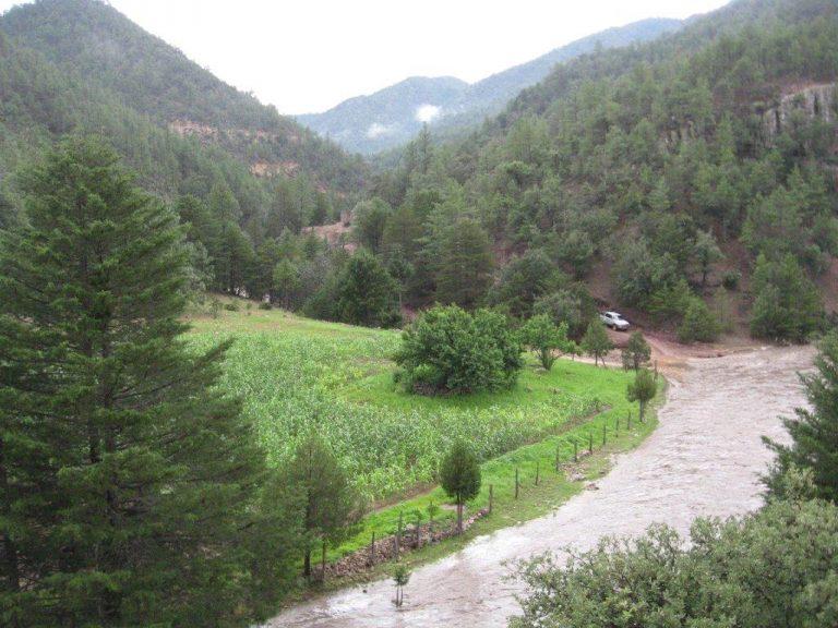 Promontorio Stream